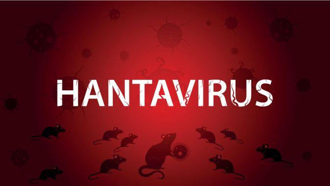 Mengenal Hantavirus, Virus di Balik Penyakit Sindrom Paru Hantavirus (SPH) | WeCare.id